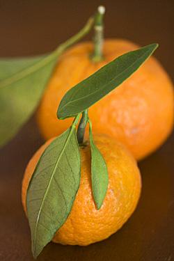 citrus-clementines.jpg