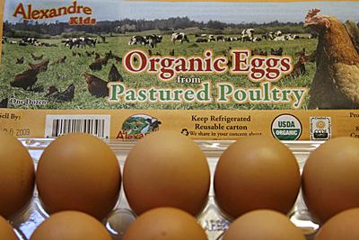 eggs-pastured_1S.jpg