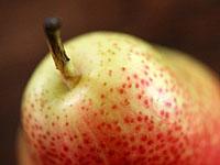 forelle_pears_ 12S.jpg