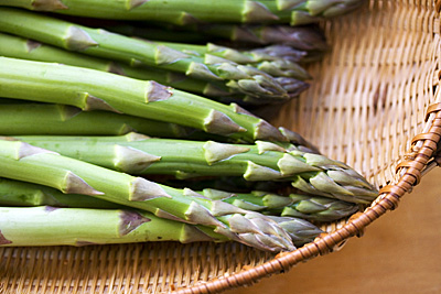 aspargus-vera1S.jpg
