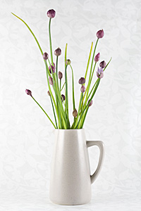 chives-composite_1S.jpg
