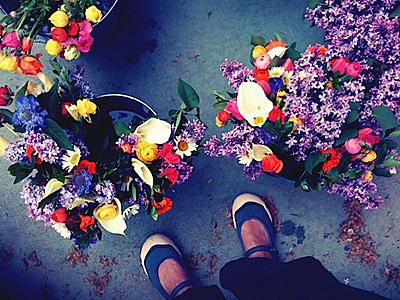 flores_chegando1S.jpg