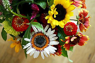 flores_julho_1S.jpg
