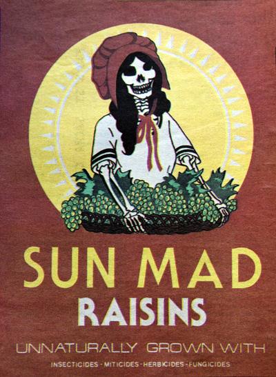 sun-mad.jpg