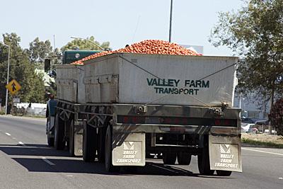 tomato-truck_1S.jpg