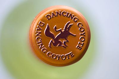 dancing-coyote_2S.jpg