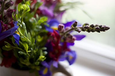 flores-sempre_3S.jpg