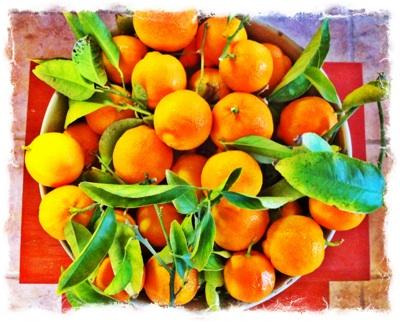 rangpur-lemon.jpg