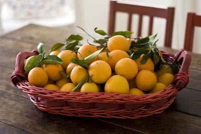 laranjas-beth_1S.jpg
