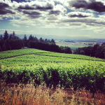 wine-oregon