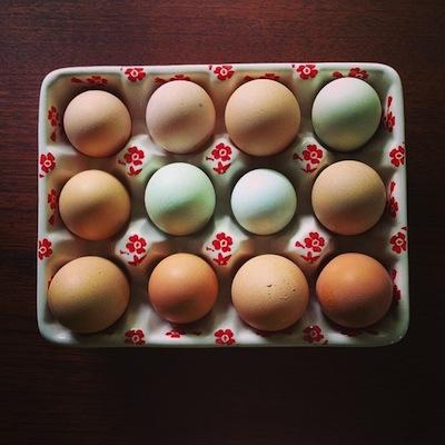 ovos-feliz14.jpg