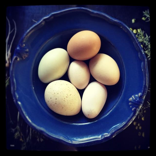 ovos-ovinhos