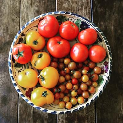 tomatada