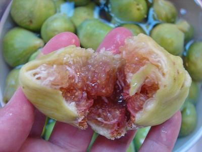 figosverdes2.jpg