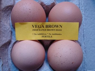 free-range-eggs.jpg
