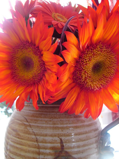 redsunflowers_gerberas.jpg