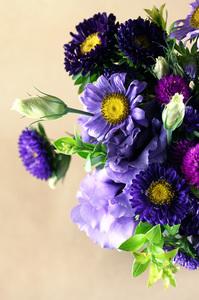 purple_rain_1S.jpg