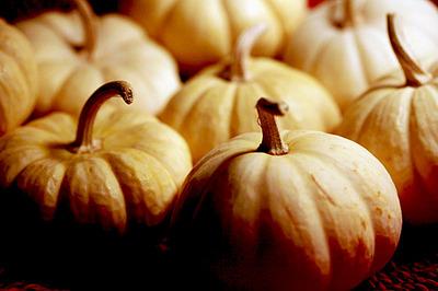 mini_boo_pumpkins_4S.jpg
