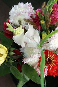 flores_fm_nov_1S.jpg