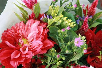 flores_fm_nov_3S.jpg