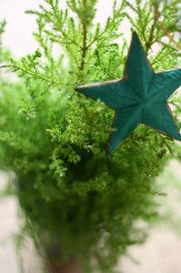 green_star_1S.jpg
