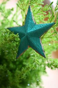 green_star_2S.jpg