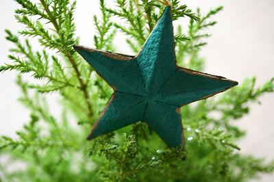 green_star_3S.jpg